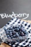 Fresh blueberries Stock Photography