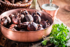 Closeup of fresh chestnuts with parsley Royalty Free Stock Images