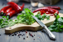 Closeup of fresh chopped parsley and red pepper Royalty Free Stock Images