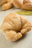 Closeup of fresh croissant with breads Royalty Free Stock Images