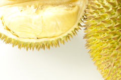 Closeup of fresh durian fruit. Durian (Durio zibethinus) is a tropical fruit native to Borneo, Indonesia and Malaysia - durian is considered the king of tropical royalty free stock image