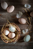 Fresh and ecological eggs from the countryside Royalty Free Stock Photos