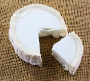 Closeup of fresh French goat`s cheese. Royalty Free Stock Photos