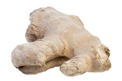Closeup of a fresh ginger root Royalty Free Stock Photos