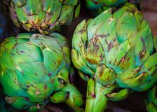 Closeup on Fresh green artichokes in the market Royalty Free Stock Images