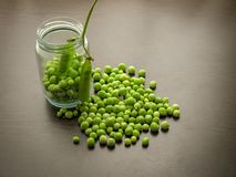 Closeup of fresh green peeled peas Pisum sativum in a glass jar on a wooden table stock photography