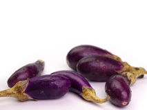 Closeup ,Fresh healthy eggplants. Placed on a  White background Stock Images