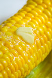 Closeup of fresh hot corn with butter Stock Photos