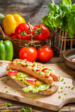 Closeup of fresh hot dog with mustard and ketchup Stock Image