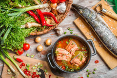 Closeup of fresh ingredients for fish soup Stock Images