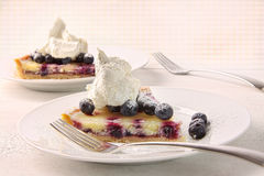 Closeup of fresh lemon blueberry tarte Royalty Free Stock Photo