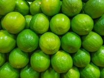 Closeup of fresh limes in a stack at the fruit market. Abstract green background with bright fresh limes. Citrus fruits Royalty Free Stock Photography