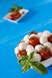 Closeup of fresh mozzarella, cherry tomatoes and basil in a whit. E bowl over a blue wooden background Stock Images