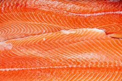 Closeup fresh norwegian salmon fillet fish on professional restaurant kitchen. Textured background. Concept carving fish, cooking stock image