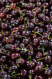 Closeup of fresh organic cherries with stems. Vertical shot of fresh organic black cherries at the Farmer`s market stock images