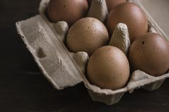 Closeup of fresh organic eggs royalty free stock image