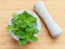 Closeup fresh peppermint leaves in the white mortar with pestle Stock Photo