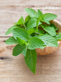 Closeup fresh peppermint  leaves in the wooden bowl on rustic ta Royalty Free Stock Photos
