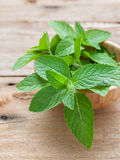 Closeup fresh peppermint  leaves in the wooden bowl on rustic ta Royalty Free Stock Photography