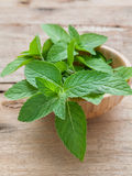 Closeup fresh peppermint  leaves in the wooden bowl . Stock Images