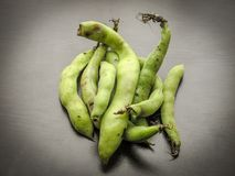 Closeup of fresh picked raw broad beans in the pod on a black wooden table royalty free stock image