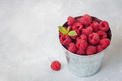 Raspberries with a mint leaf in iron bucket Stock Photography