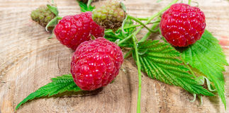Closeup of fresh raspberries. Closeup of fresh raspberries on a wooden background Stock Photos