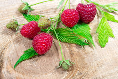 Closeup of fresh raspberries. Royalty Free Stock Images