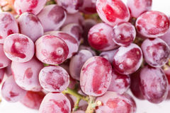 Closeup of Fresh Red Grapes Royalty Free Stock Photography