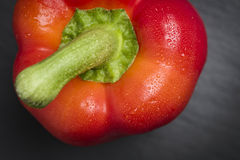 Closeup of a fresh red pepper. Royalty Free Stock Image