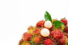 Closeup of fresh red ripe rambutan Nephelium lappaceum. With leaves isolated on white background. Thai dessert sweet fruits. Tropical fruit Stock Photos