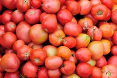 Fresh red tomatoes. Closeup of fresh red tomatoes as a background Stock Photography