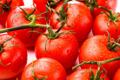 Closeup of fresh red tomatoes Royalty Free Stock Photo