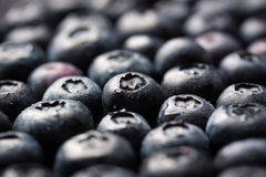 Closeup of fresh ripe blueberries on a black stone background with copy space Stock Image