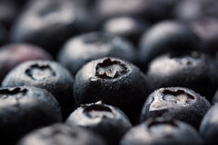 Closeup of fresh ripe blueberries on a black stone background with copy space. Selective focus Stock Image