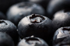 Closeup of fresh ripe blueberries on a black stone background with copy space. Selective focus Royalty Free Stock Image
