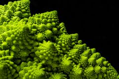Closeup of fresh romanesco cauliflower Stock Photography