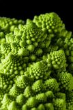Closeup of fresh romanesco cauliflower Royalty Free Stock Image