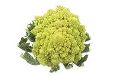 Closeup of fresh romanesco cauliflower isolated on white background, up view Royalty Free Stock Photo