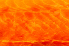 Closeup fresh salmon red fish meat as food background texture Stock Images