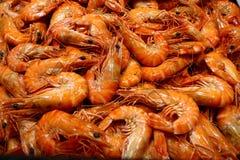 Closeup Fresh Shrimp. Fresh shrimp at the market - food background Royalty Free Stock Images