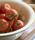 Closeup of fresh tomatoes collection stock images