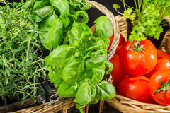 Fresh vegetables and herbs in a basket Stock Photos