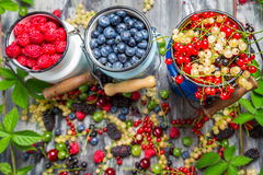 Closeup of fresh wild berry fuits Stock Photo