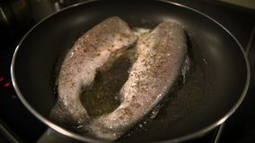 Closeup of freshly fried trout stock footage