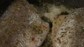 Closeup of freshly fried trout stock video footage