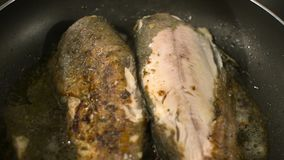 Closeup of freshly fried trout stock video