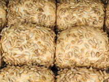 Closeup of freshly made sunflower seed buns. Side by side Royalty Free Stock Photography