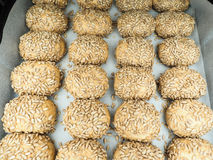 Closeup of freshly made sunflower seed buns on a waxed paper. Tray at close-up royalty free stock photography