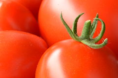 Closeup of freshly picked tomatoes Royalty Free Stock Photos